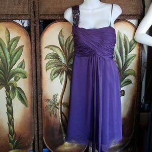 Beautiful nwt Purple dress